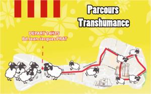 Le grand défilé de la transhumance
