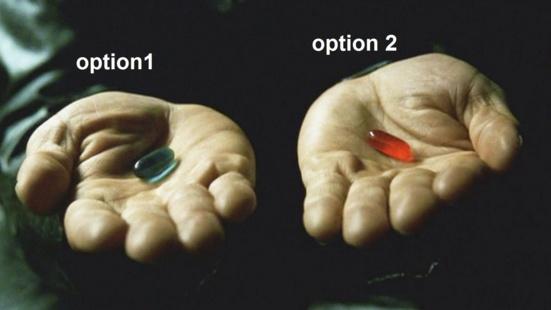 Faire le choix de l'avenir en votant Option 2