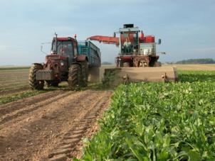 Crise agricole : Le MODEF et la FNJEF interpellent le Président de la République