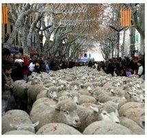 La festo di Pastre 2010 : L'année des Carreto ramado (charrette fleurie)