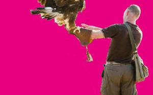 Journée pastorale et spectacle de fauconnerie