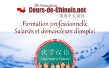 La formation professionnelle pour apprendre le chinois