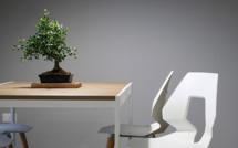 Table basse : comment bien la choisir pour un salon design?