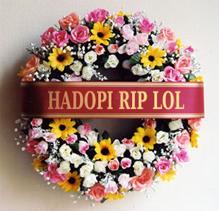 Hadopi...raté !