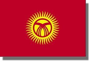 XXXVème congrès (extraordinaire) du Parti des Communistes du Kirghizstan