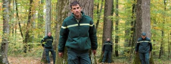 """""""Ce n'est pas une usine à bois"""" : des forestiers manifestent dans l'Allier contre """"l'industrialisation"""" de la forêt"""