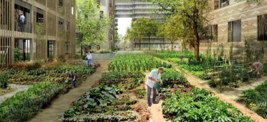 Le Val-de-Marne (dirigé par le PCF) engagé pour développer l'agriculture, le bio et les circuits courts