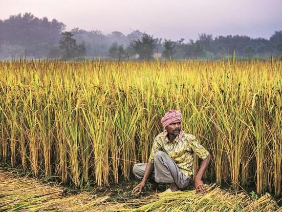 Le Kerala communiste vient au secours des agriculteurs en difficulté du nord de l'Inde
