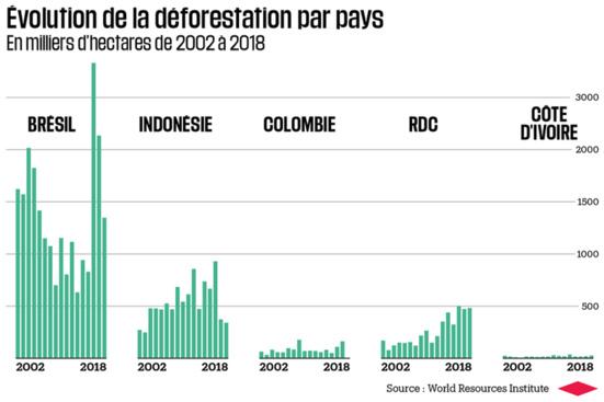 Le capitalisme a ravagé 12 millions d'hectares de forêts tropicales en 2018