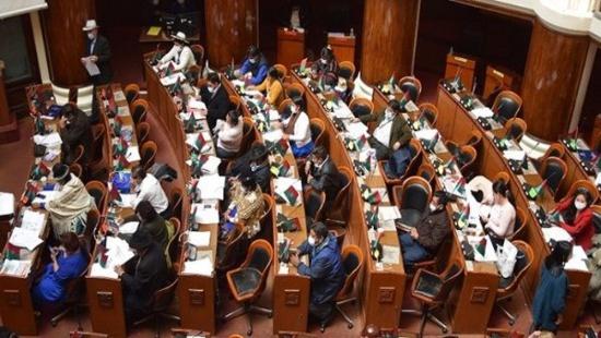 L'Assemblée bolivienne demande l'ouverture d'un procès pour génocide contre Jeanine Áñez