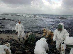 Marée noire: Erika, les pollueurs paieront