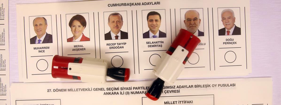 """Deux observateurs internationaux interdits en Turquie au motif que leurs """"opinions politiques sont publiquement exprimées"""""""