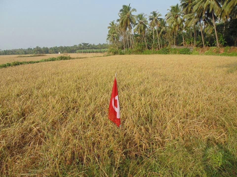 Le CPI(M) développe l'agriculture biologique au Kerala