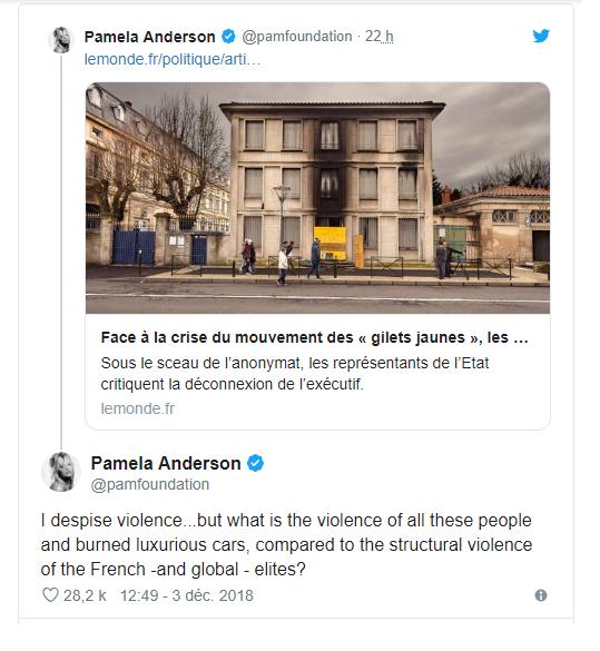 """Sur les gilets jaunes, Pamela Anderson dénonce la """"violence des élites"""""""