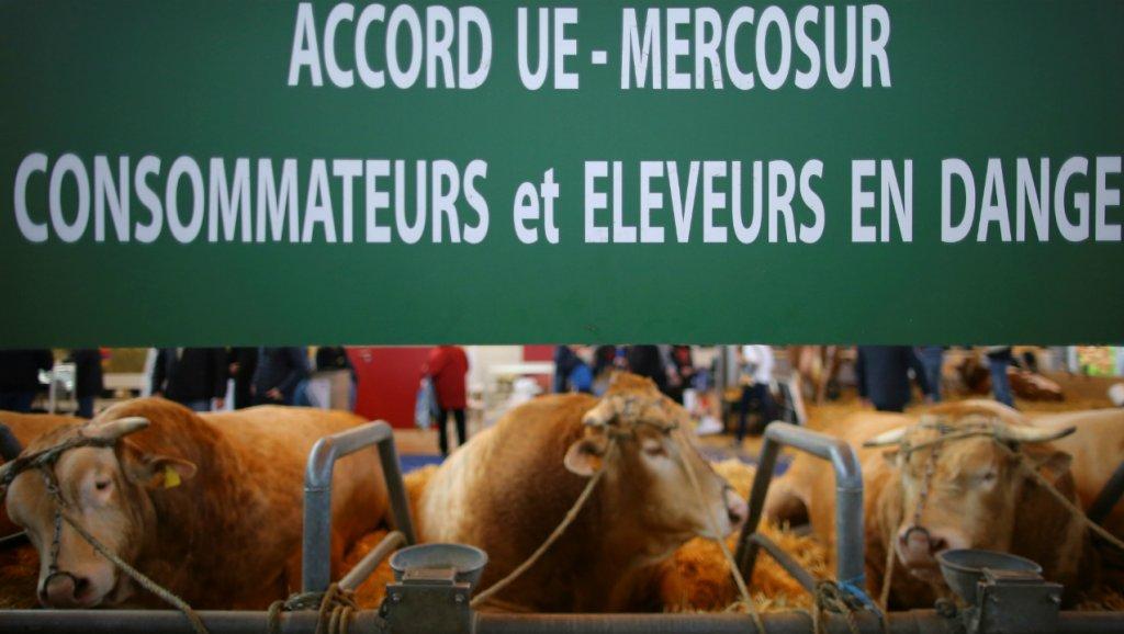 Les syndicats paysans et d'agriculteurs dénoncent l'accord UE-Mercosur