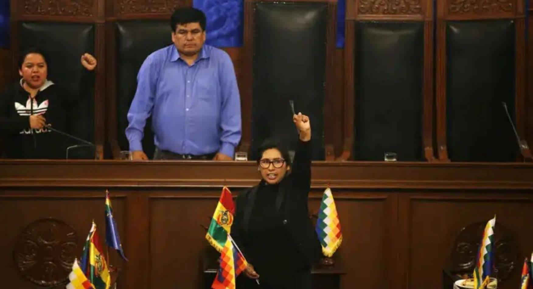 Monica Eva Copa (MAS) élue Présidente du sénat bolivien