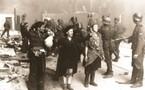 Amendement Mariani - Contrôle ADN pour les étrangers, Au secours, Pétain revient !