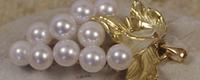 Cannes: perles de culture Netperles