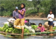 Peuple Awa en Colombie