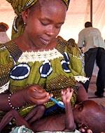 Actus monde: 1 milliars de sous-alimentés en 2008