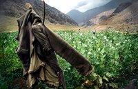 Actus monde: 10 000 soldats de plus en Afghanistan
