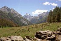 Les Hautes Alpes pour vos vacances d'été