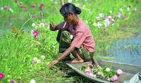 Asie: l'UE renouvelle ses sanctions contre la Birmanie