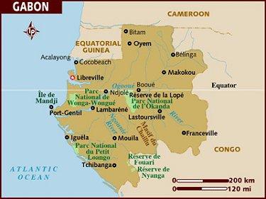 Trois candidats revendiquent la victoire au Gabon