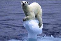Réchauffement climatique: il fait si froid à Copenhague