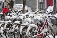 Monde: l'Europe victime du froid et autres news