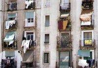 España Editoweb noticias 24 Enero 2010