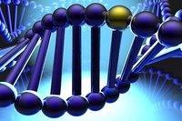 Monde: la justice américaine invalide le brevetage de deux gènes et autres news