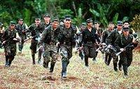 L'armée colombienne libère trois otages des Farc