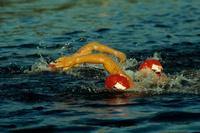 Natation : Les Français à l'assaut du 100 mètres à Budapest.