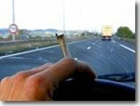 Un élu anti-légalisation chopé avec de la marijuana et autres infos