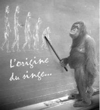 L'information en France du 6/06/2011