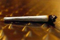 France: légalisation du cannabis et autres actus