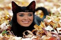 Katy Perry hypnotise ses chats