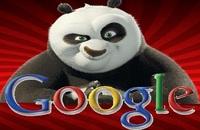 Internet: Google Panda s'invite chez nous