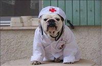 Insolite: la fausse infirmière