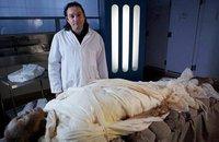 Le grand saut de la momie
