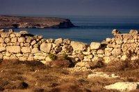 Malta news: Gonzi's game
