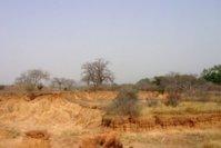 La Cédéao et le nord Mali