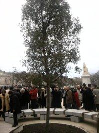 Journée de la laïcité 2012: par delà laïcité et tolérance?