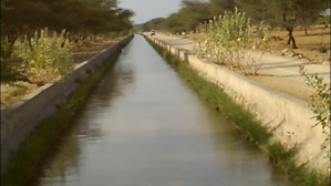 Un homme jette ses enfants dans un canal et tue sa femme