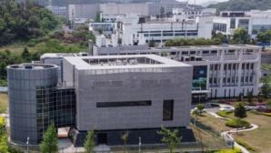 Pourquoi les théories de la fuite du laboratoire de Wuhan gagnent en popularité ?