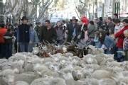 Arles: La provence se rebelle.
