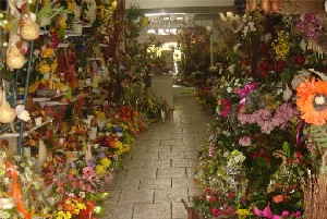 La Fare les Oliviers: fleuriste en Provence
