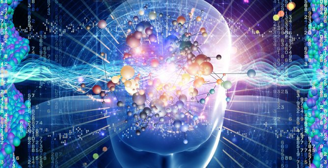 Tout savoir sur le cerveau du 16 au 22 mars 2015