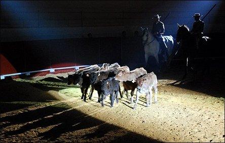 10ème anniversaire de la feria mondiale du taureau